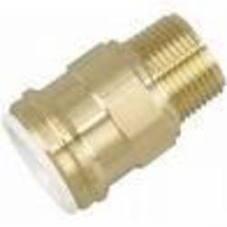 "22mm x 3/4"" Brass Male BSP connector"